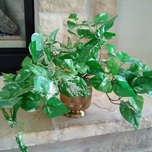 Faux Plant in Gold Planter- philodendron